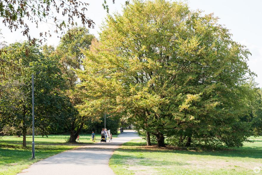 Der Grüttpark - ehemaliges Landesgartenschaugelände