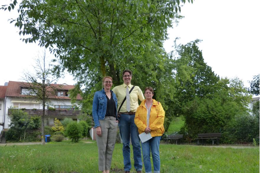 Monika Neuhöfer-Avdić, Jens Langela und Britta Staub-Abt vor einem Zürgerlbaum